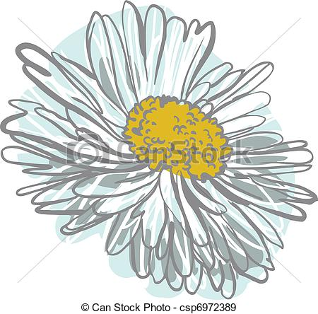 Chamomile clipart vector Vectors EPS color of of