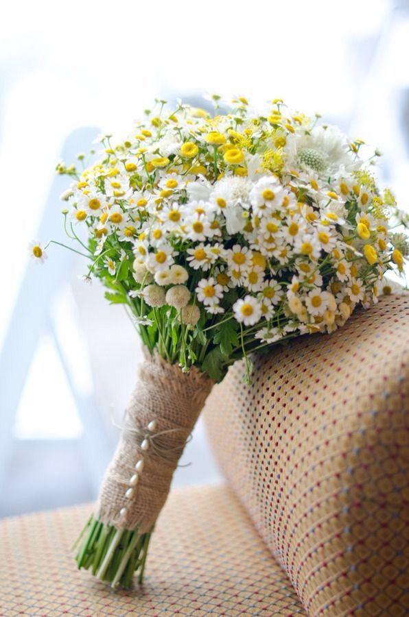 Chamomile clipart wedding flower bouquet Ślub Pinterest Wedding Yellow motyw
