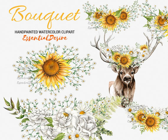 Chamomile clipart wedding flower bouquet Gypsophila Bouquets Clipart Antlers Antlers
