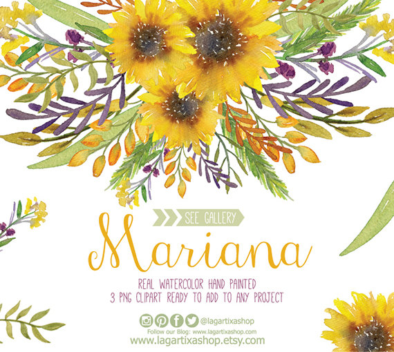 Chamomile clipart wedding flower bouquet Paper banner wedding PNG PNG
