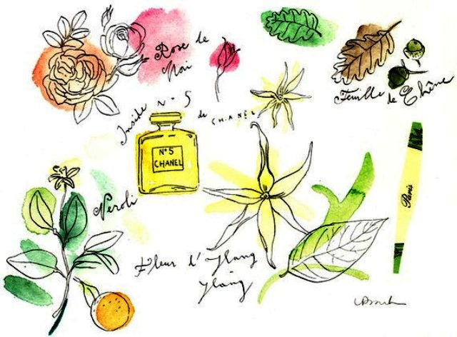 Chanel clipart june flower Ylang 5 no prache Perfume