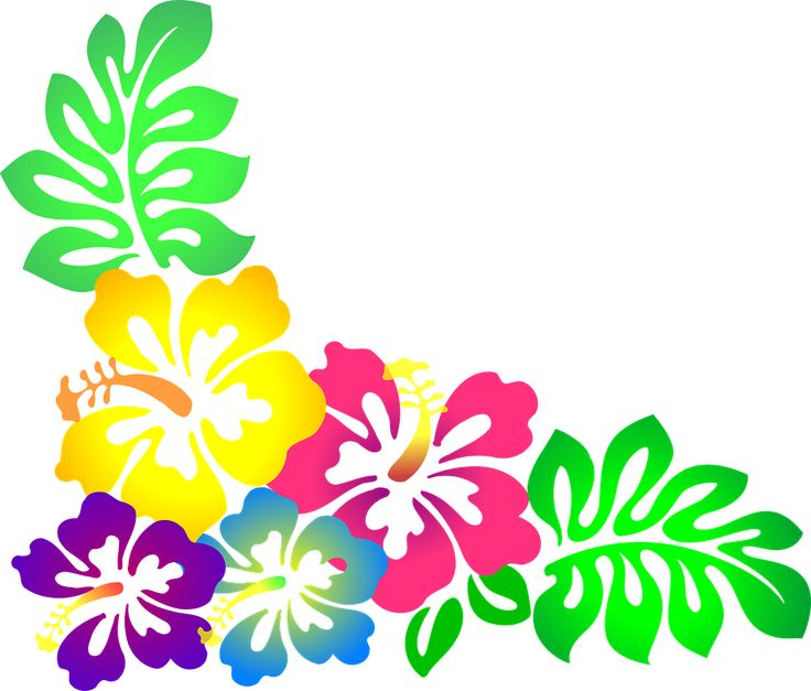 Chanel clipart june flower Cliparts this 312 more on