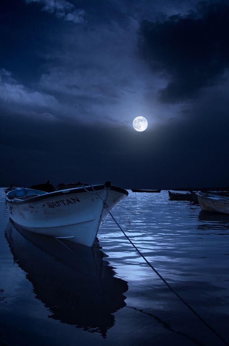 Moonlight clipart blue moon #6