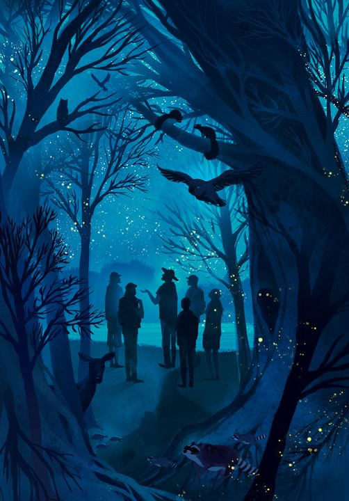 Changing To Night  clipart night forest Illustration Godbey 25+ http://lightnightrains Night