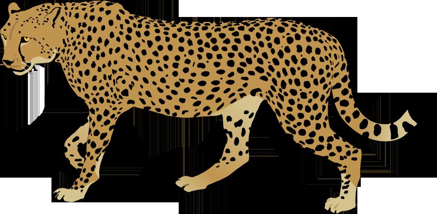 Legz clipart leg crossed Clipart Panda Clipart Clipart Cheetah