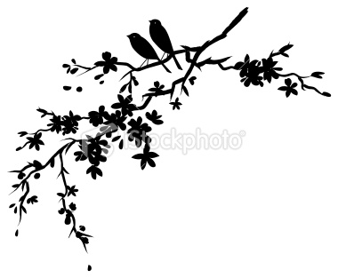 Blossom clipart black cherry With Cherry_blossom Pin Find