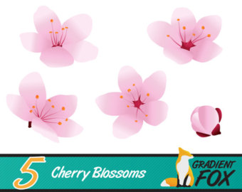 Buttercup clipart cherry blossom Floral blossoms printable flower clip