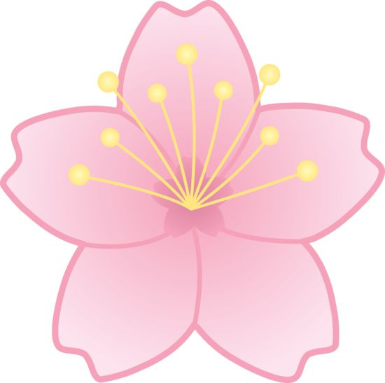 Pink Flower clipart japanese cherry blossom Liz cherry pink on of