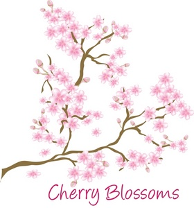 Blossom clipart pink blossom Cherry Blossoms Cherry Clipart Image