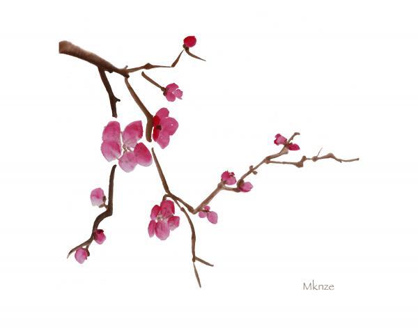 Sakura Blossom clipart japan #14