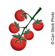 Cherry Tomato clipart bush 479  Stock Illustrationsby Cherry