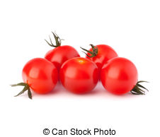 Cherry Tomato clipart bush Tomato and cherry tomato