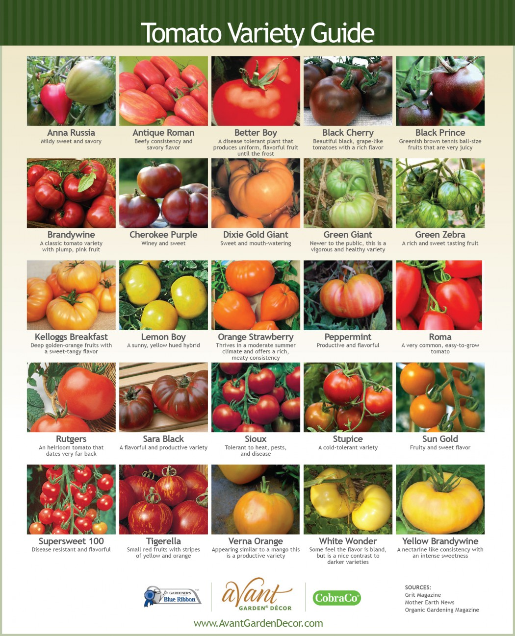 Cherry Tomato clipart different kind plant Them a  grow plant