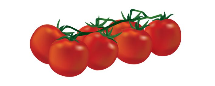 Cherry Tomato clipart human Best Pinterest tomatoes Vector Discover