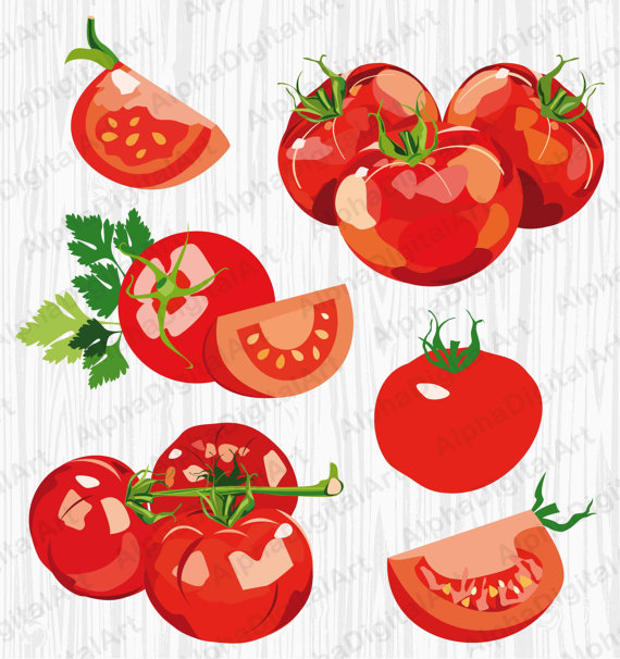 Cherry Tomato clipart pepper plant Vegetables 6 pepper clipart salad