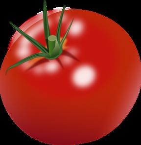 Cherry Tomato clipart tomato slice At com Tomato online art