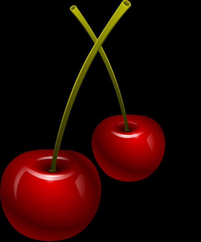 Cherry Tree clipart berry MEDIUM (PNG) berries IMAGE vysnios