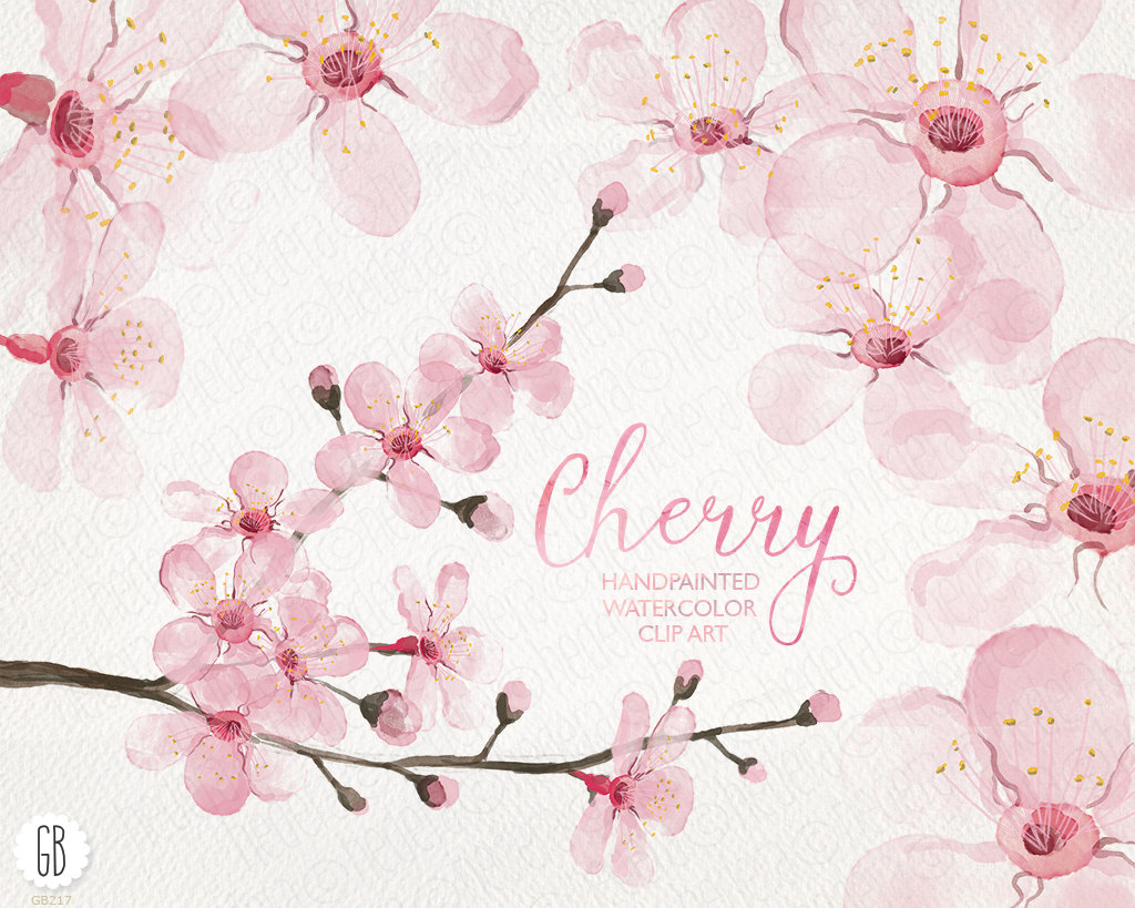 Cherry Tree clipart colorful Cherry cherry cherry blossoms tree