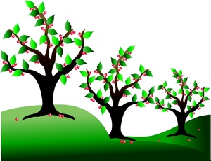 Cherry Tree clipart fruit orchard In Trees Image Image: Cherry