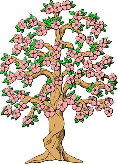 Cherry Tree clipart orange tree Tree Orange Spring Images Free