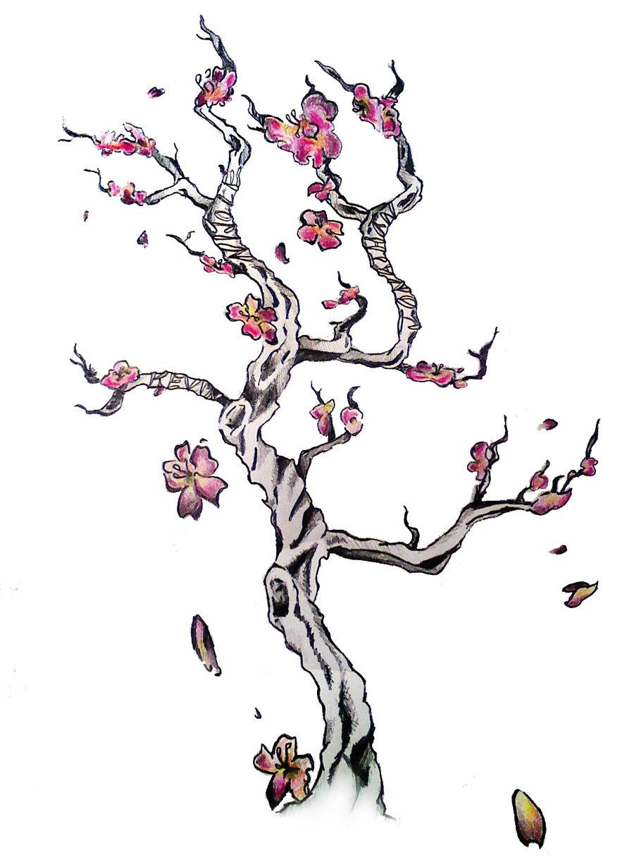 Cherry Tree clipart small Design Blossom cherry tree of