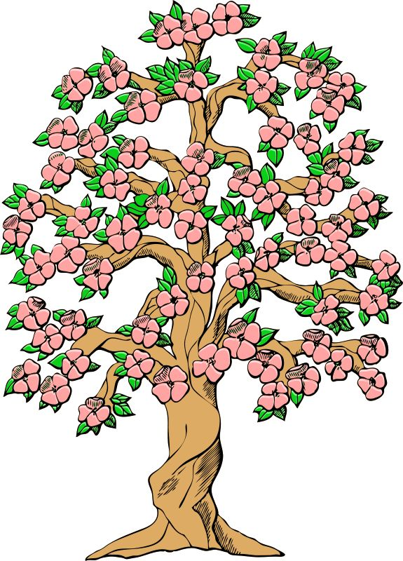 Cherry Tree clipart spring bird Tree Pinterest Floral Flower images