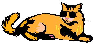 Bobcat clipart cool cat Collection Cool clipart  cat