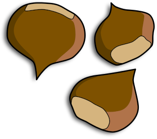 Chestnut clipart Download Clip Chestnuts Page 2