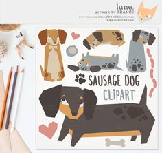 Chestnut clipart cute Palimino Art Library for Cliparts