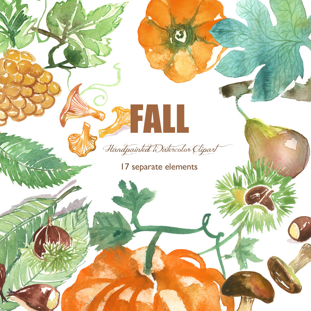 Chestnut clipart cute Grape file leaves Fall botanical