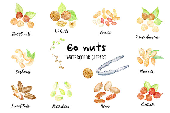 Chestnut clipart cute Nut cashew CornerCroft Nuts nut