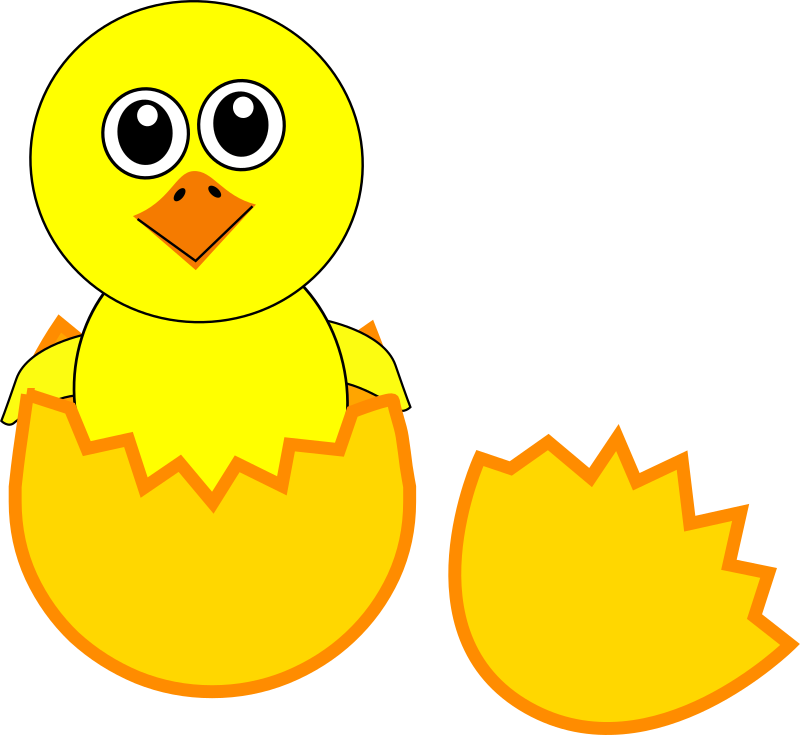 Chick clipart #3