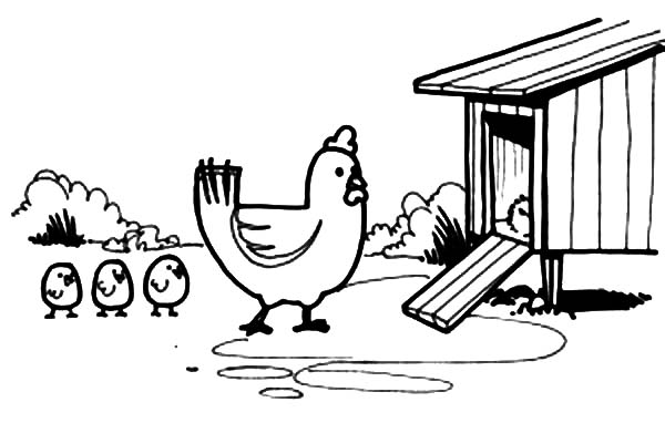 Chick clipart chicken house Her Coloring Chick Enter Chicken