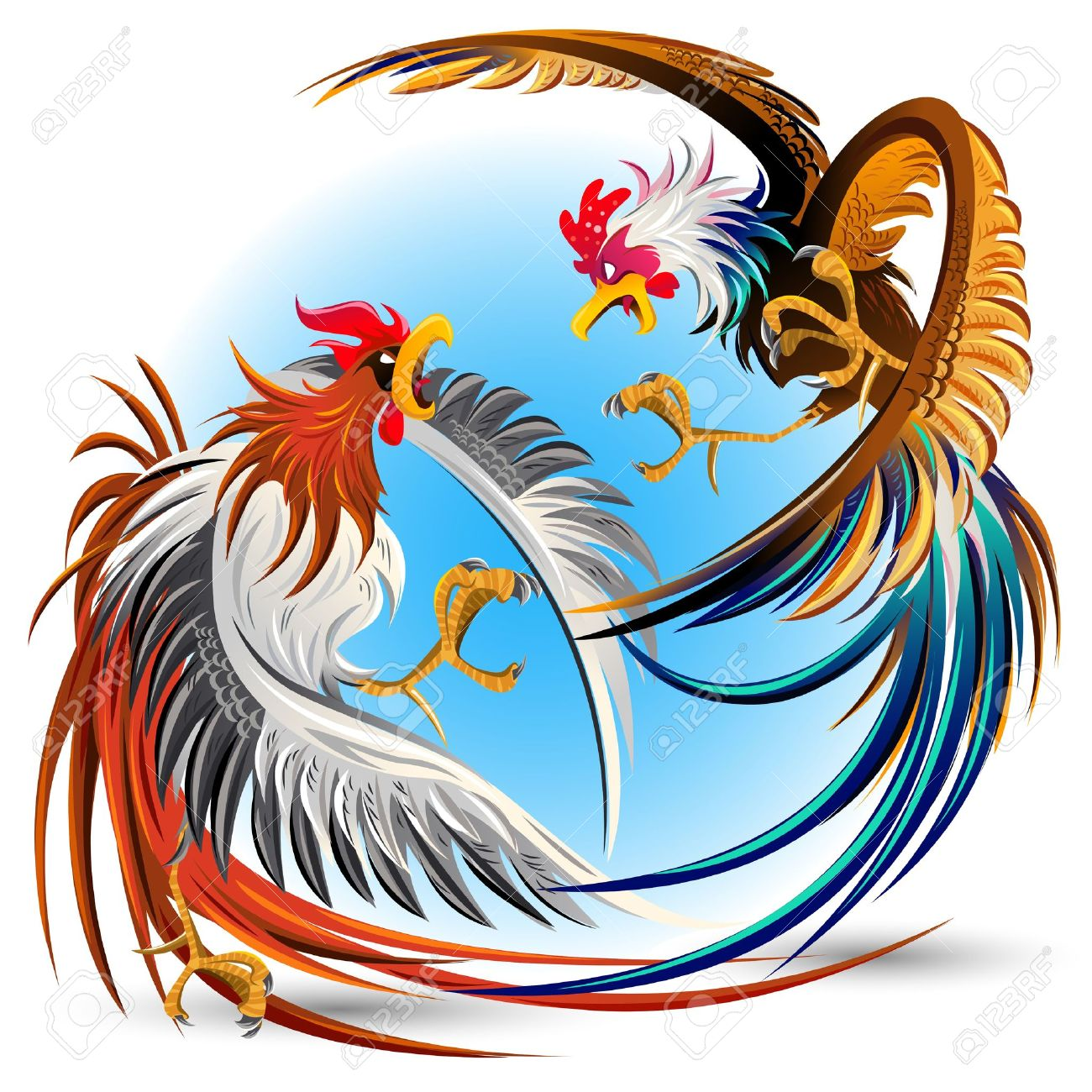 Chicken clipart fighter Rooster Asian rooster Search fighting
