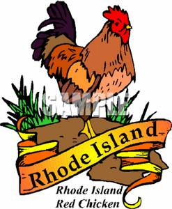 Chicken clipart rhode island red  Island Island Rhode Island