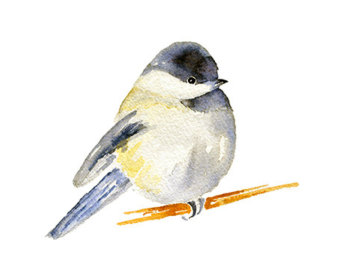 Chickadee clipart Clipart Painting Print Instant Digital