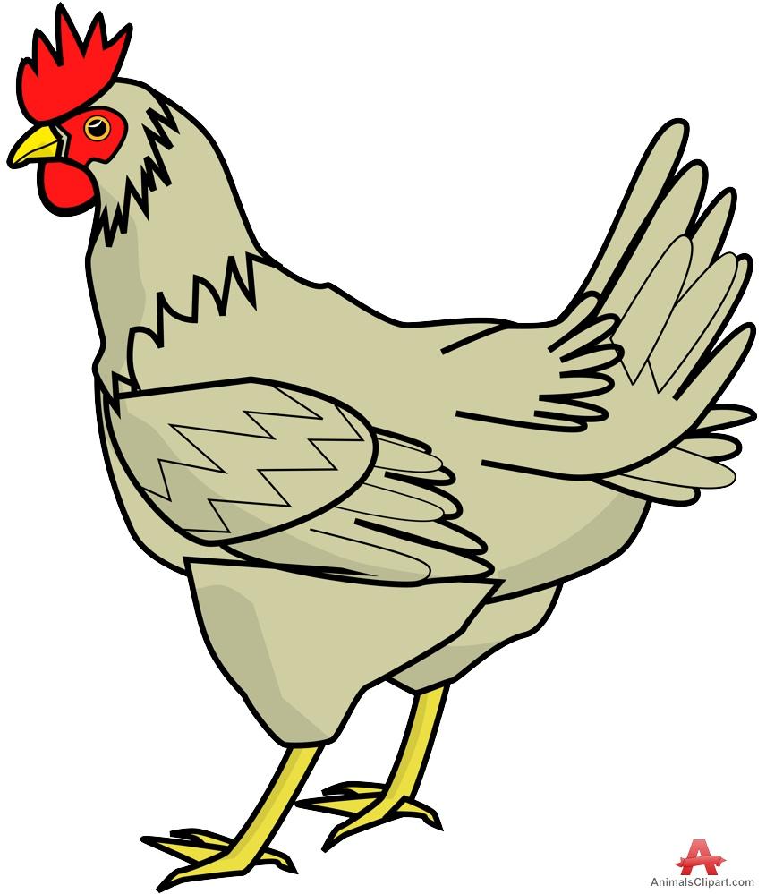 Chicken clipart NiceClipart 4 Chicken clip art