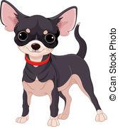 Chihuahua clipart  Chihuahua Chihuahua Royalty Vector