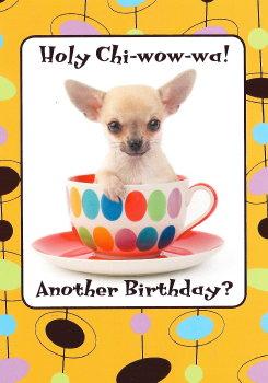 Chihuahua clipart birthday Birthdays Chihuahua Birthday Cards Pinterest