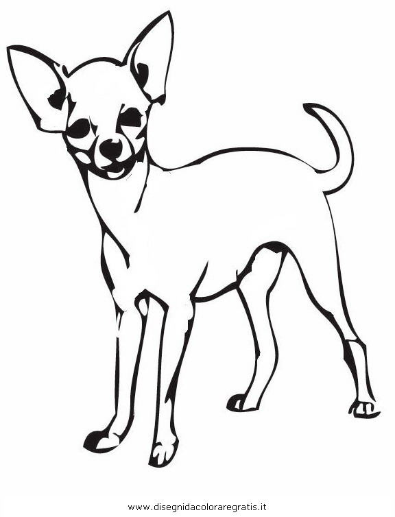 Chihuahua clipart coloring page Images coloring pages chihuahua dog
