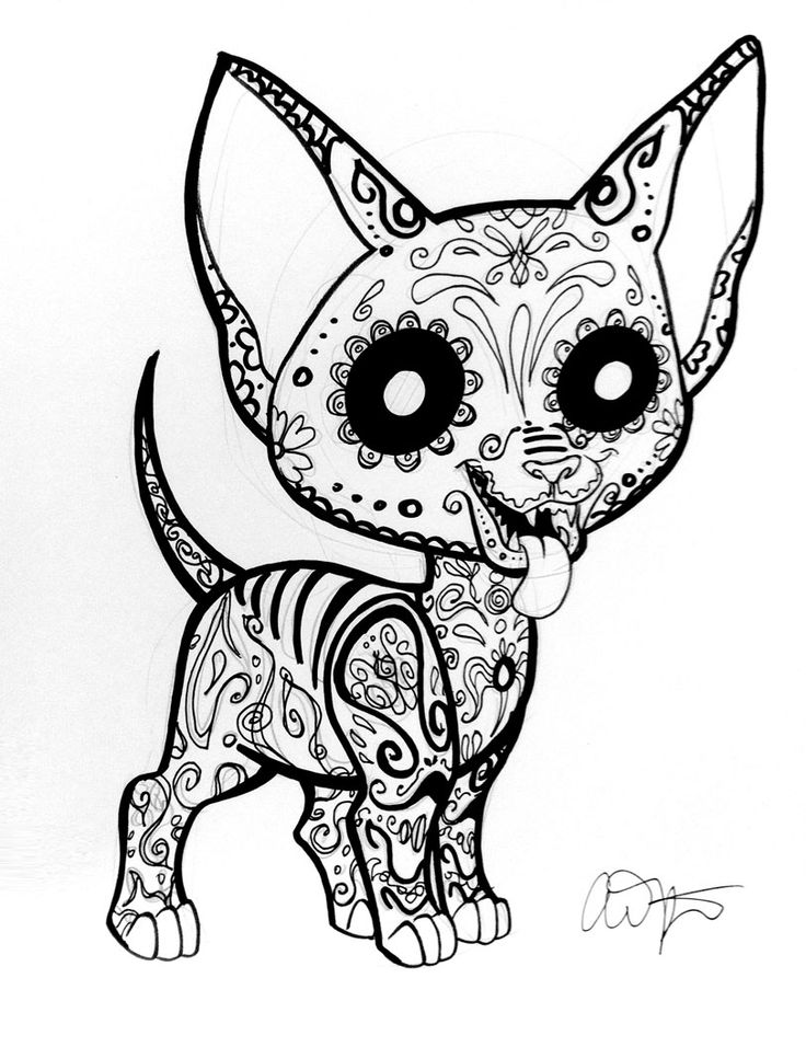 Chihuahua clipart coloring page Coloring coloring pages Search dog