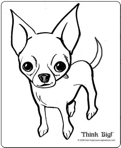 Chihuahua clipart draw a How Puppies Chihuahua Drawings by