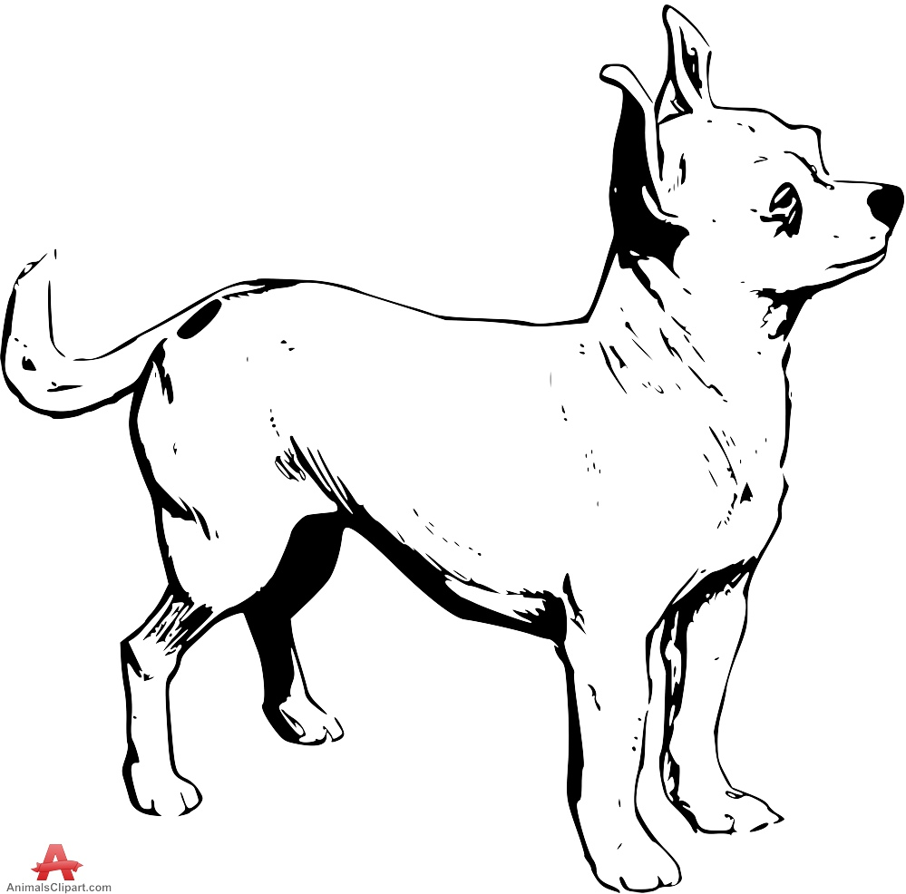 Chihuahua clipart drawing Free Design Drawing Clipart Dog