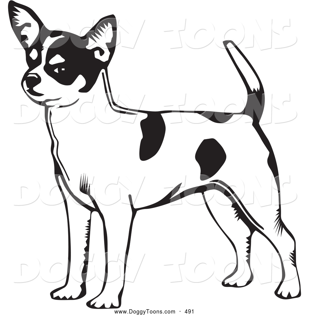 Chihuahua clipart drawing Bing dog pages pages coloring
