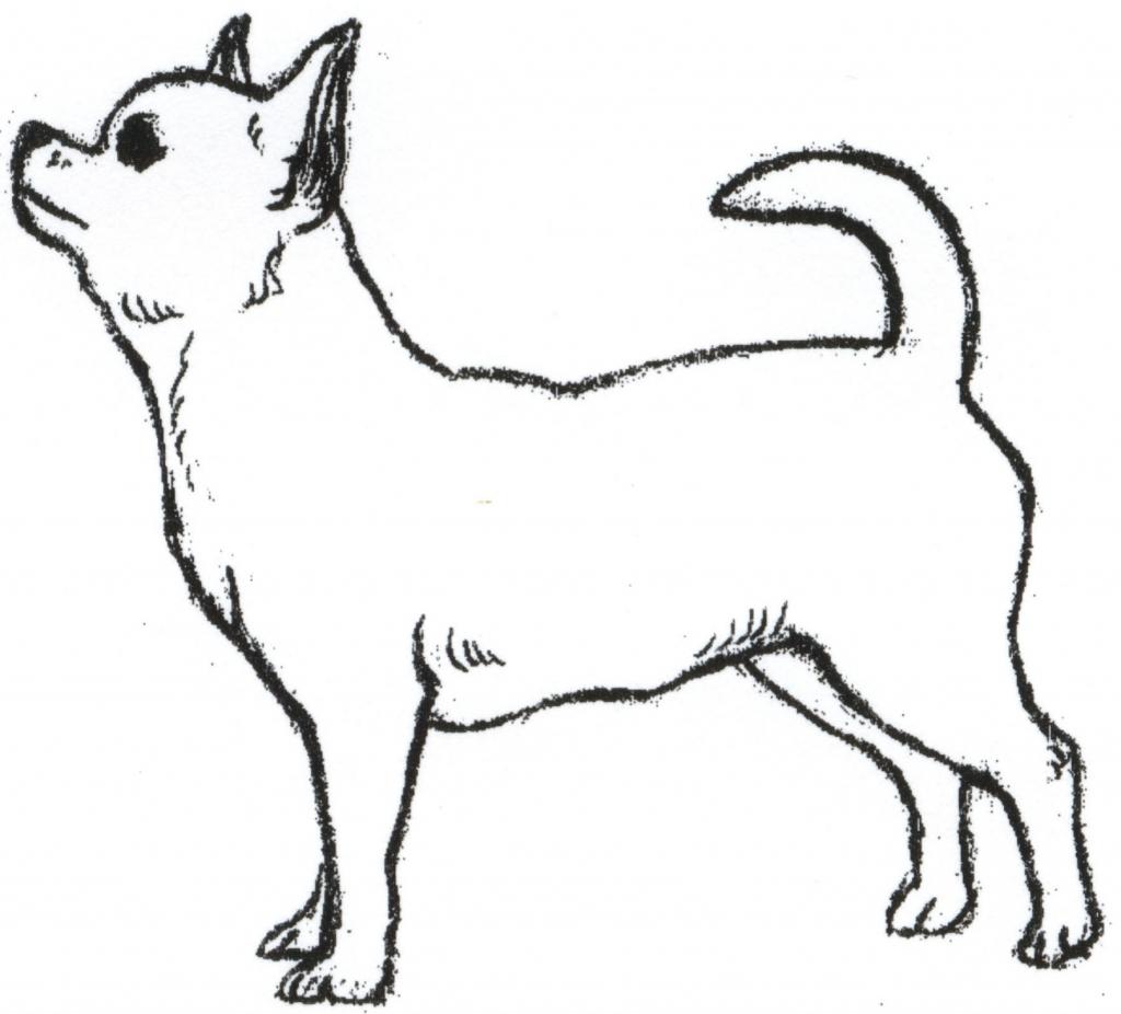 Chihuahua clipart drawing Dancing Cliparts Clipart Drawings Dog