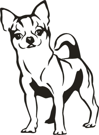 Chihuahua clipart drawing Your Show our our your