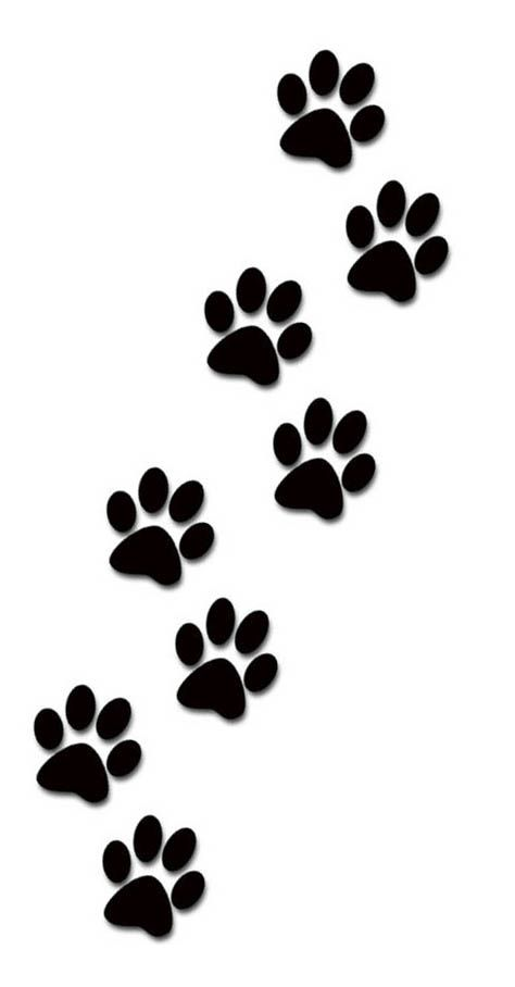 Paw clipart animal foot On images Prints! images best