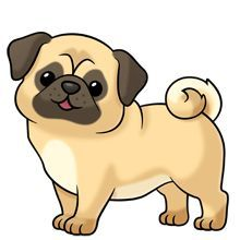 Drawn pug anime (220×220) about on Cartoon clipart