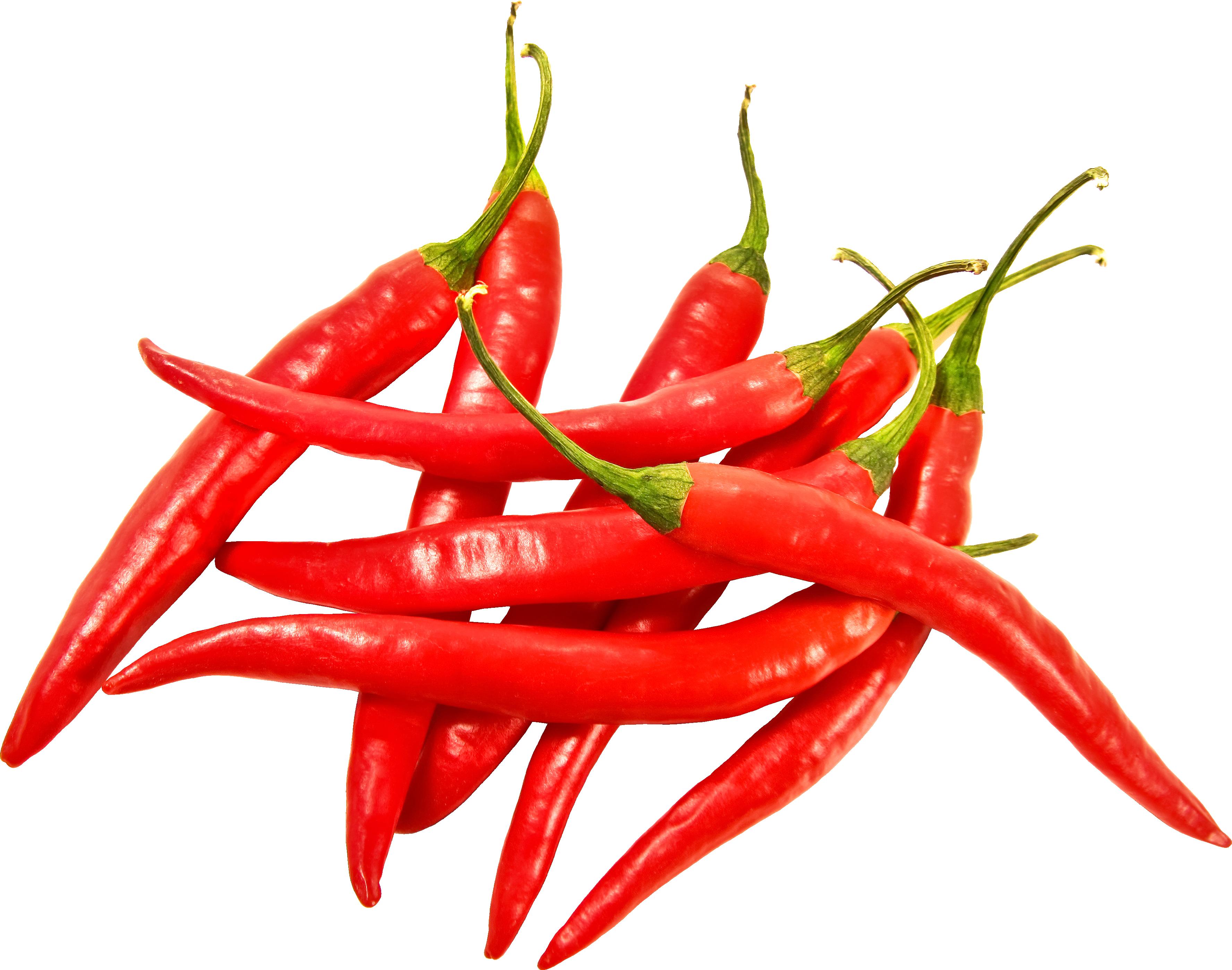 Chile clipart sili Download chili Clip Download Red