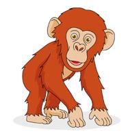 Chimpanzee clipart Chimpanzee Chimpanzee Graphics Art Clipart